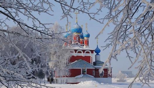 白桦茸在寒冷地区生长俄罗斯