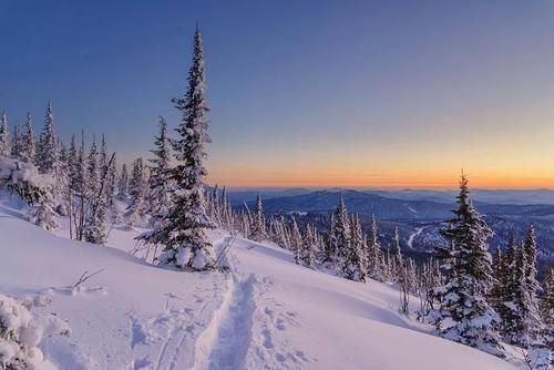 西伯利亚的种植环境